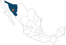 sonora_hermosillo